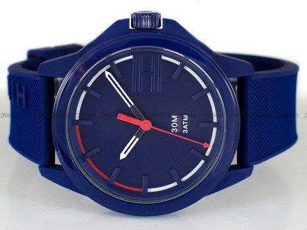 Zegarek Męski Tommy Hilfiger 1791625