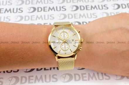 Zegarek Pierre Ricaud P97201.1113CH