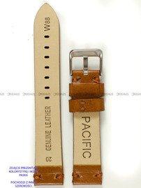 Pasek skórzany do zegarka - Pacific W88.22.3 - 22 mm